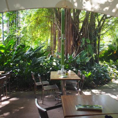 ボタニックガーデンのカフェ