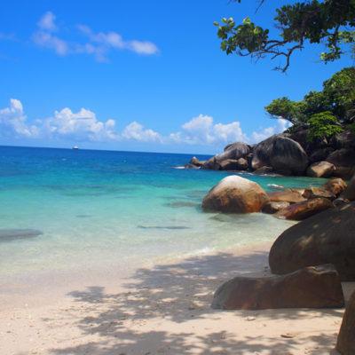 fitzroy-island-beach