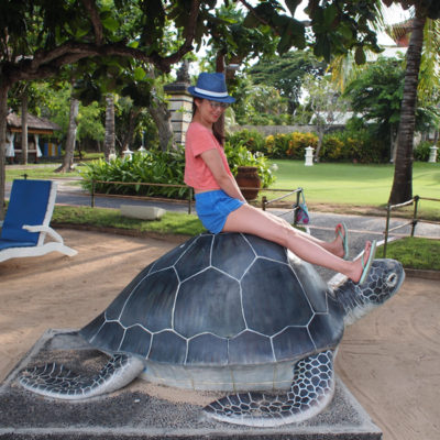 nusa-dua-private-beach-westin-turtle hatchery